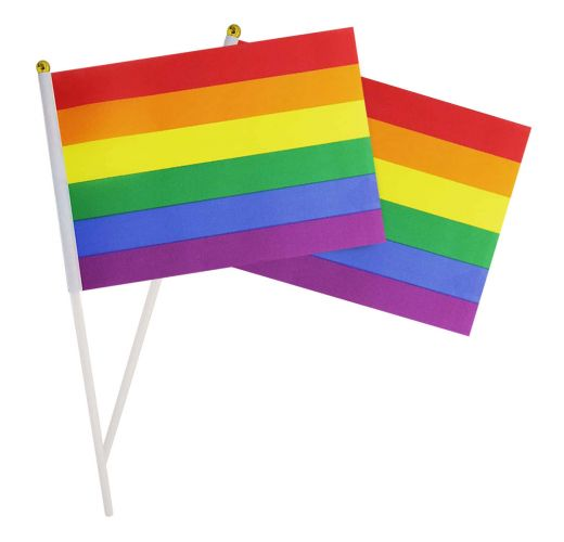 LGBT Pride Hand Flags